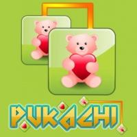 Pukachi